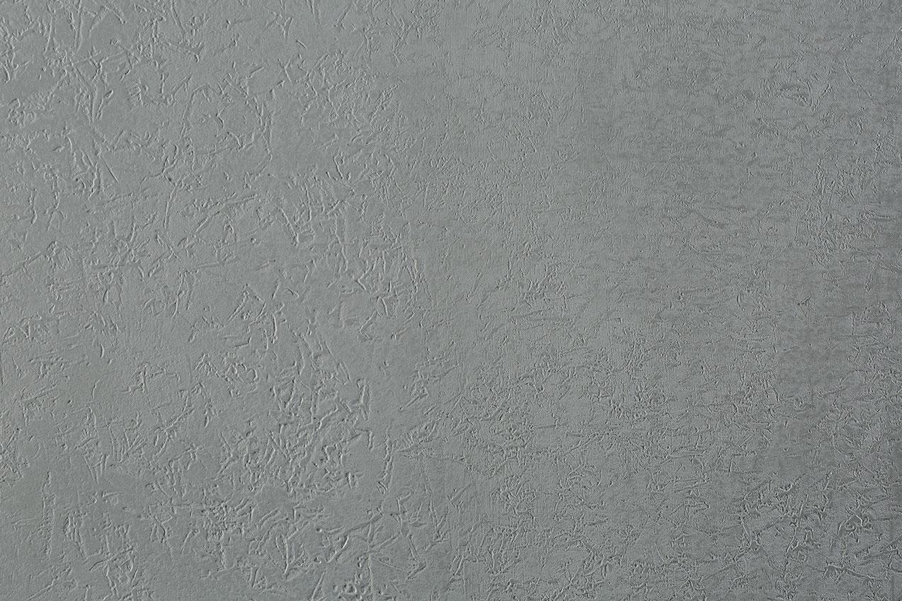 Rivestimento effetto fossile, colore grigio scuro - microtopping
